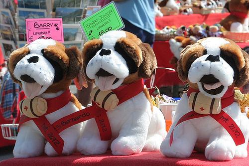 assicurazione cani